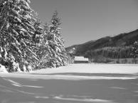Winter in Wald (1)